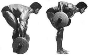 Sports Authority Bench Press The Lats And The Bench Press Much Ado About Very Little