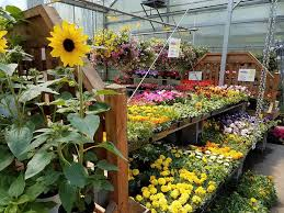 full of flowers for spring planting u2014 masterson u0027s garden center inc
