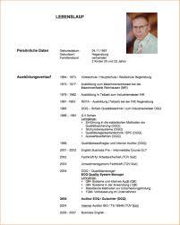 Lebenslauf Vorlage Rav Innovation Manager Lebenslauf Beispiel Starengineering