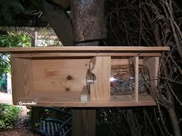 fabrication mangeoire oiseaux une mangeoire pour écureuils fait maison créavitalité