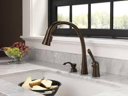 delta rubbed bronze kitchen faucet kitchen delta bronze kitchen faucet and 33 delta dst installed