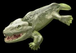 evolutionary flop early 4 footed land animal was no walker