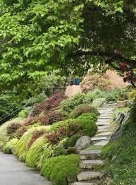 futuristic plants used japanese garden design on j 901x1226