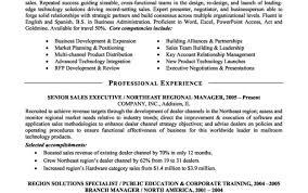 Senior Sales Executive Resume Samples Beautiful Resume Builder App Free Tags Resume Maker App Resume