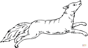 coyote coloring pages coloring page blog