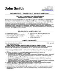 format of cv resume a resume template for a senior vice president loyalty you can