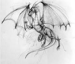 170 images dragons