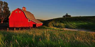why are barns red the reason farmers paint barns red