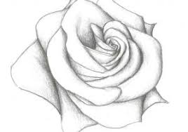 design flower rose drawing the images collection of s drawing ideas for beginners flowers of