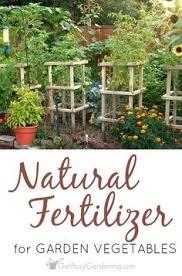 Garden Fertilizer Types - types of garden fertilizer for vegetable gardens so it grows big
