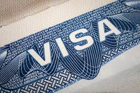 pattern day trader h1b can i apply for an o 1 visa if i don t get an h 1b investopedia