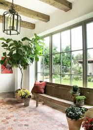 the 10 best low maintenance indoor plants houzz