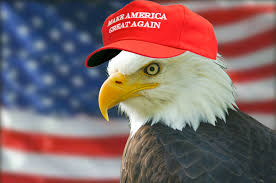 America Eagle Meme - eagle make america great again know your meme