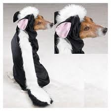 Skunk Halloween Costumes Selling Halloween Costumes Dogs 2016 Absolutely Needed