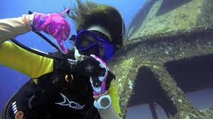 padi scuba diving courses local dive thailand