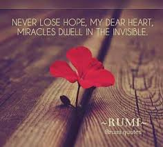 Image result for rumi love red hearts Miracles