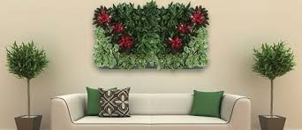 plant for office office plants indoor plants for green wall wedding plants rental