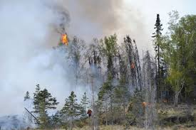 Wildfire Yukon by Lightning Ignites Wildfires In Southwest And Western Alaska