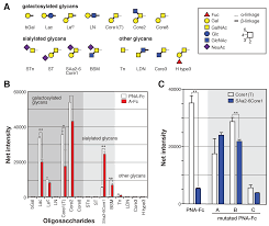 biomolecules free full text mammalian cell surface display as