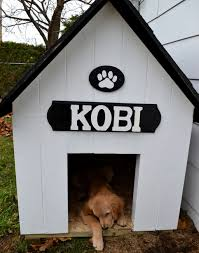 cool dog houses outdoor cool dog house 20 awesome outdoor dog houses outdoor