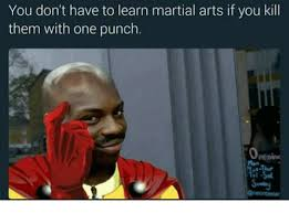 Martial Arts Memes - you don t have to learn martial arts if you kill them with one punch