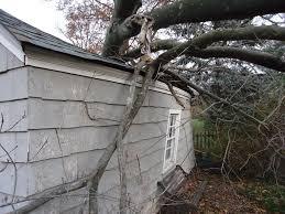 repairing garage damaged by fallen tree in bridgewater skydell