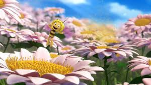 studio 100 inks deal u0027maya bee u0027 u0027florrie u0027s dragons