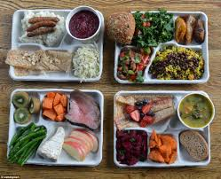 what school lunches look like around the world and the uk and us