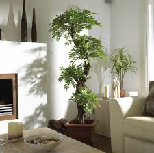 fake plants for living room living room ideas