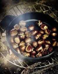 cuisiner chataigne châtaignes grillées au feu de bois pour 4 personnes recettes