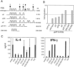 friend of gata is expressed in naive th cells and functions as a