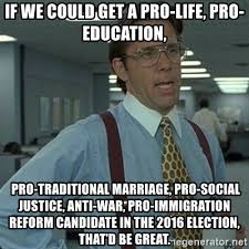 Traditional Marriage Meme - if we could get a pro life pro education pro traditional