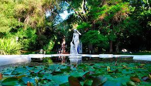 Urban Gardens San Francisco - great botanical gardens sf san francisco botanical garden urban