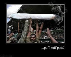 Funny Pot Memes - weed memes cannabis memes funny pot memes puff puff pass www