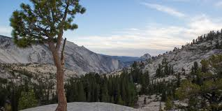 what you need to know about camping in yosemite including when to