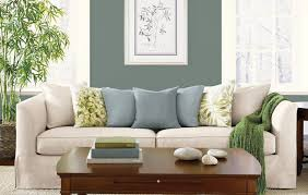living room colors decorating ideas sage green couch dark sofa
