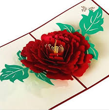227 Happy Wedding Anniversary To Imported 3d Rose Happy Birthday Wedding Anniversary Greeting Card