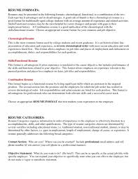 resume summary for college student best resume collection