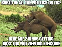 Meme On Sex - image tagged in politics rhino funny memes memes sex imgflip