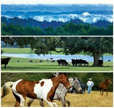 Seeking Ranch 152 Best Legacy Land Ranches For Sale Images On Acre
