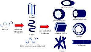 organic u0026 biomolecular chemistry blog