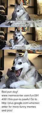 Pun Dog Meme - 25 best memes about bad pun bad pun memes