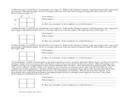 incomplete dominant and codominant traits worksheet worksheet