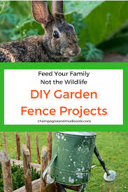 Diy Garden Fence Ideas Diy Garden Fence Ideas Protect Your Harvest Chagne And Mudboots