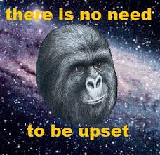 Gorilla Munch Meme - don t get your jimmies rustled a study in memes the once and