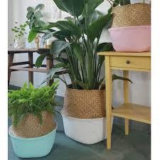 plante pour chambre saiclehome panier d osier rangement créatif pot plante pliable pour