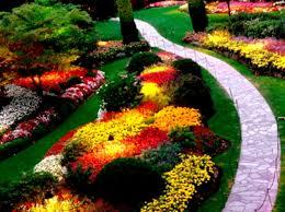 outdoor backyard flowers fully rainbow ideas backyard flowers