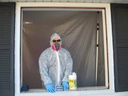 epa mandated lead paint removal when replacing windows