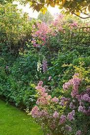 800 best garden jardin 3 images on pinterest gardens