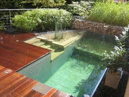 Backyard Swimming Ponds by 30 Best Terrace Design Swimming Ponds Images On Pinterest